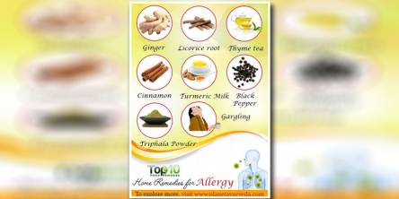 Best 10 Home Remedies for Seasonal Allergies